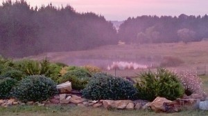 Mist over the dam at sunrise